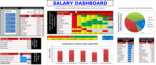 Dashboard to visualize Excel Salaries - by Prakash Singh Gusain - Chandoo.org - Screenshot