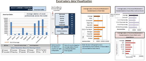 Dashboard to visualize Excel Salaries - by Yogesh Gupta - Chandoo.org - Screenshot