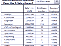 Dashboard to visualize Excel Salaries - by rajendrajo@gmail.com.xlsm - Chandoo.org - Screenshot #02