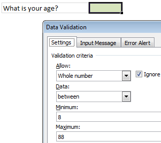 Excel Data Validation Rules - Example